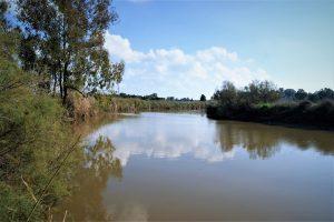 River nahal Alexander